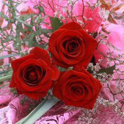 photodune 2968272 bouquet xs