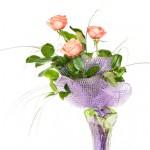 http://www.dreamstime.com/-image22475909
