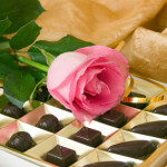 Pink rose and chocolate box