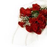 Bouquet of claret roses