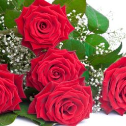 photodune 672403 bouquet of roses xs