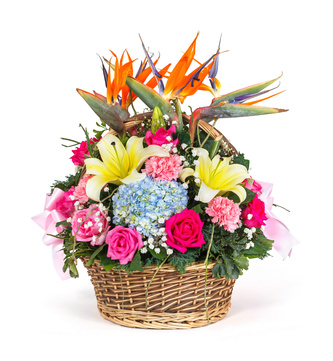 basket of smiles