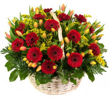Flower Basket St. Petersburg