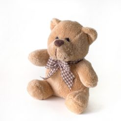 photodune 2916676 teddy bear xs