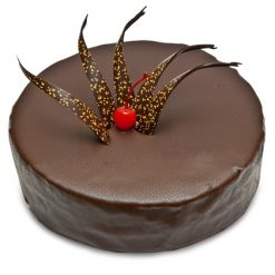 photodune 1325396 chocolate cake xs