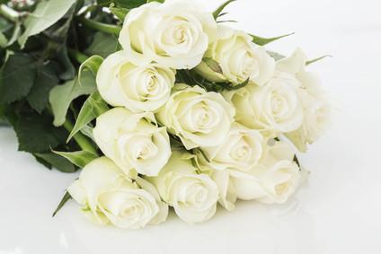 11 whiteroses