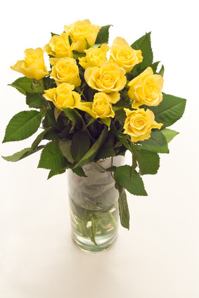 11yellow roses