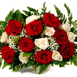 17 red and white roses