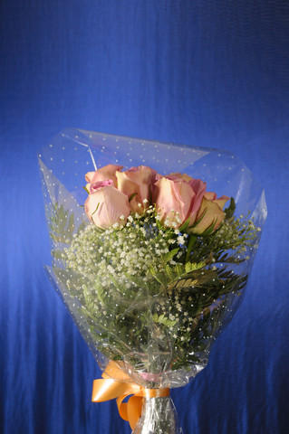 9 pink roses